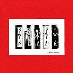 Kiwi Jr. album cover